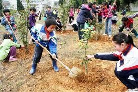 Ch tree planting